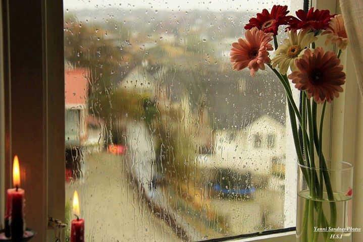 Monsoon Decor, www.stylecity.in