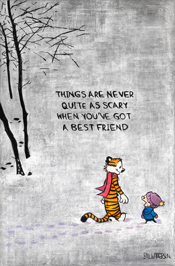 Calvin and Hobbes quote, Dangerdust, www.stylecity.in
